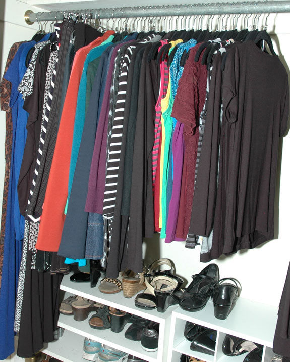 Skirts & Dresses Closet Section