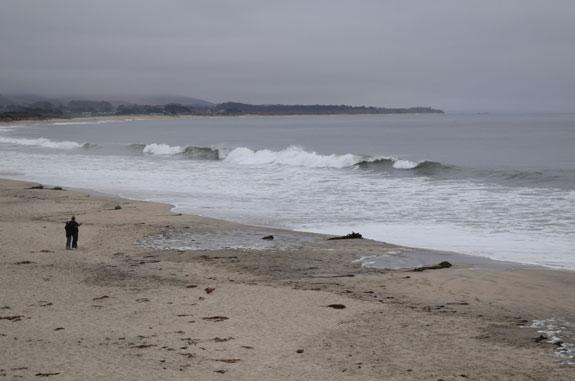 beach near the Cypress Inn, Half Moon Bay